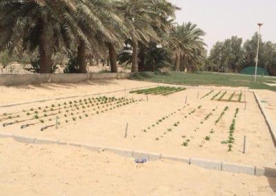 مارس في المملكة العربية السعودية – إعادة استخدام المياه